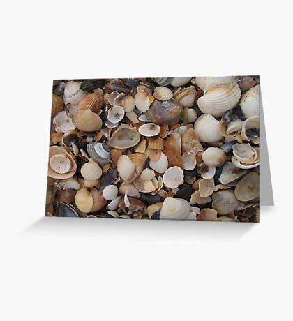 Seashells on the sea shore Greeting Card