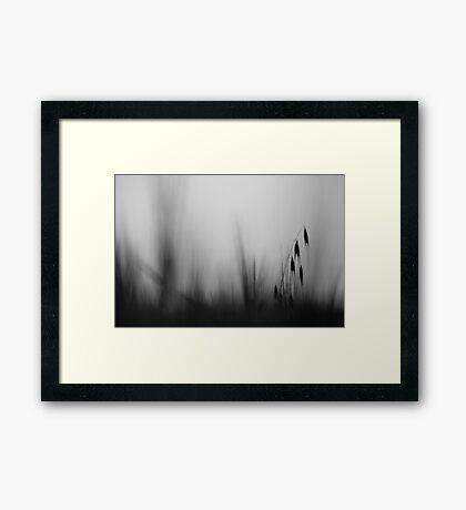 in my dreams III Framed Print