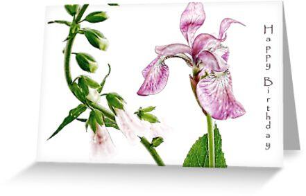 Iris and Foxglove Birthday Card by LouiseK