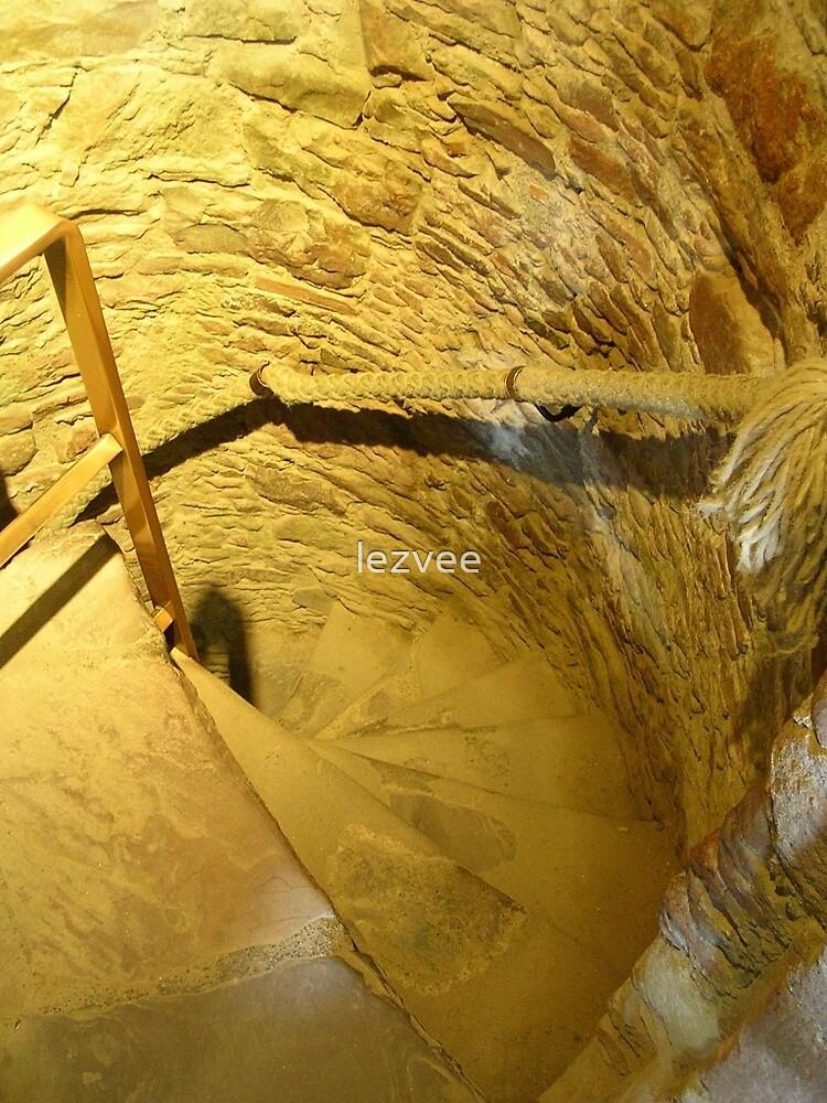 Spiral Stairs at Urquhart by lezvee