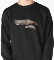 Sperm whale  Pullover