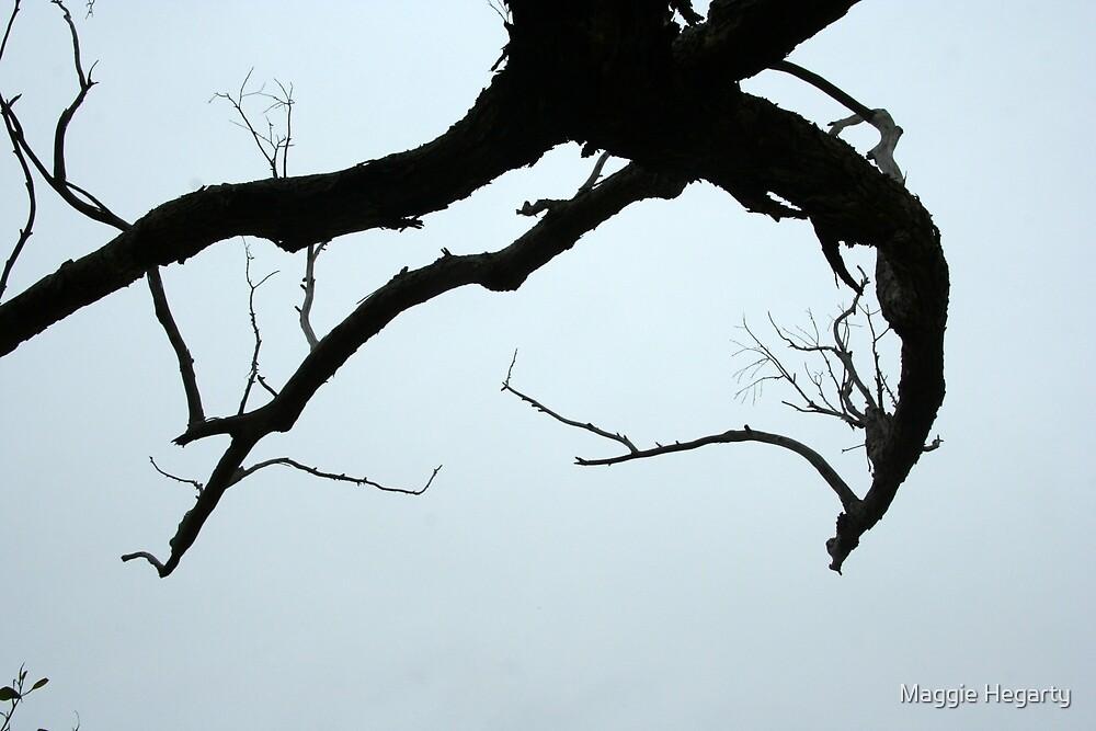 Dead branch overhead by Maggie Hegarty