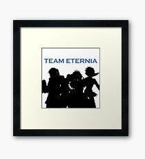 Team Eternia Framed Print