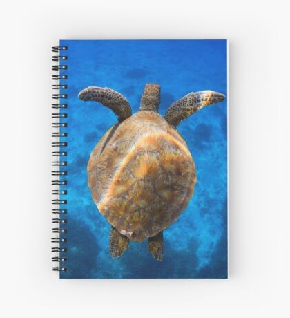 Cruising turtle - print Spiral Notebook