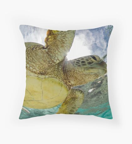 Hopeful turtle - print Throw Pillow
