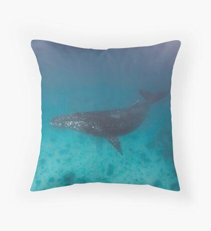 Whale swimming - print Throw Pillow