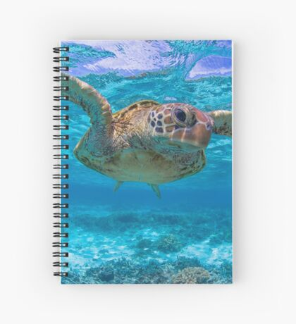 Checking you out Spiral Notebook