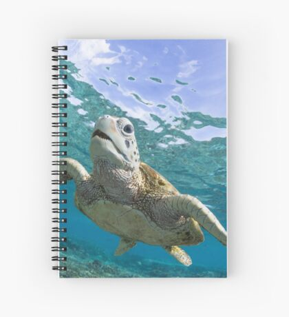 Turtle grin Spiral Notebook