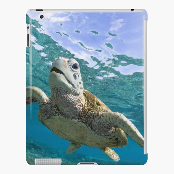 Turtle grin iPad Snap Case