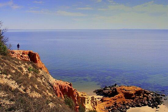 Red Bluff  Sandringham Victoria  Australia by bayside2