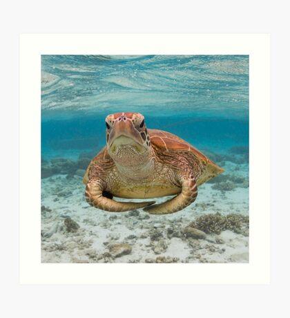 Turtle yoga pose Art Print