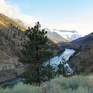 Canyon Morning by Tracy Friesen