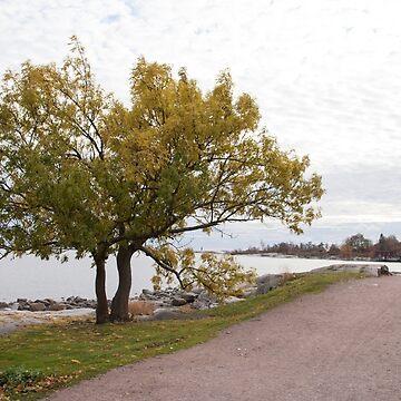 Finland, Helsinki seaside by oleksiyvovk