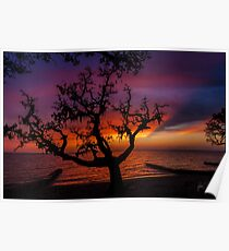 colington shadow sunset Poster