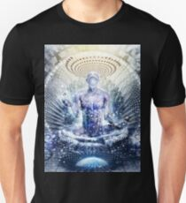 Awake Could Be So Beautiful, 2011 Unisex T-Shirt