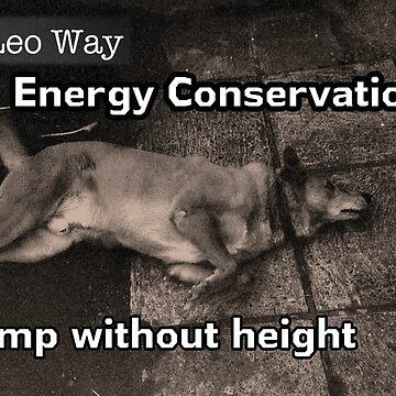 The Leo Way: Conserve Energy by Leennascreative