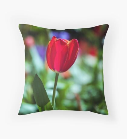 Tasmania Tulip Throw Pillow