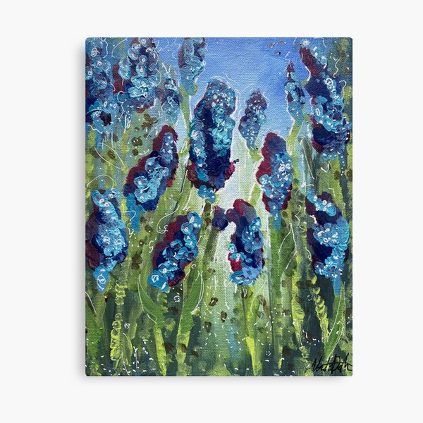 Magic Hyacinth Field  Canvas Print