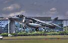 AV-8B Harrier ll by Nigel Bangert