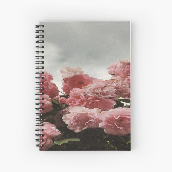 Beautiful pink roses photography  Spiral Notebook
