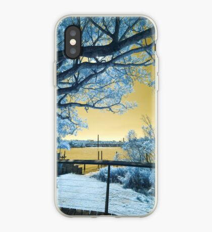The Fig Tree and the Eleanor Schonell Bridge iPhone Case