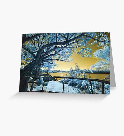 The Fig Tree and the Eleanor Schonell Bridge Greeting Card