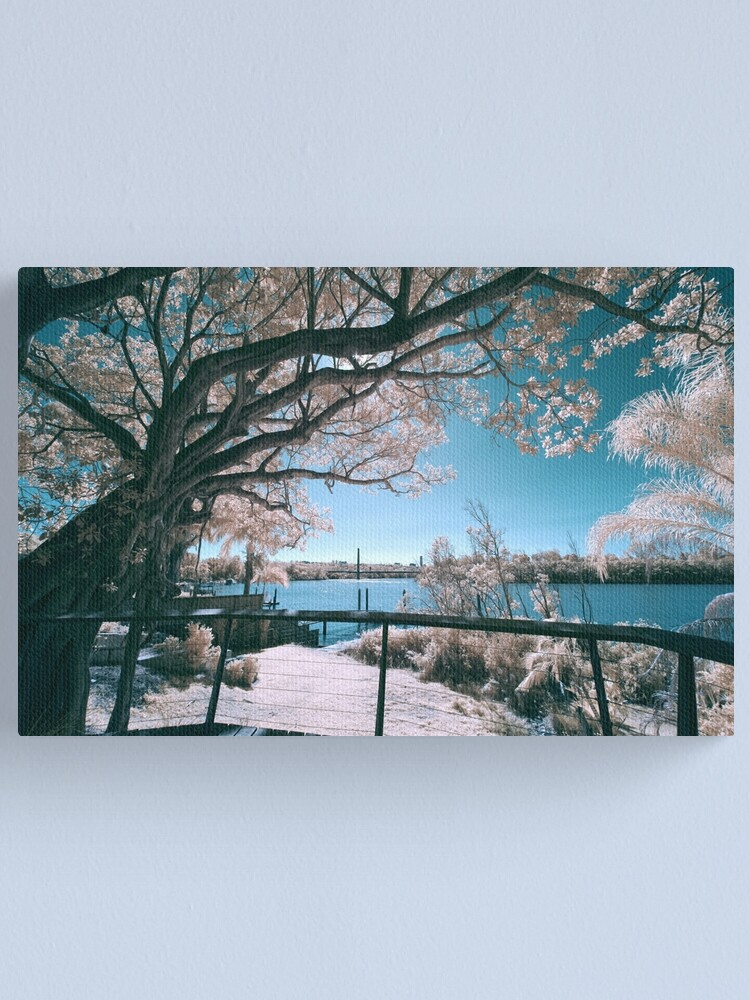 Alternate view of The Fig Tree in Pink And Green Canvas Print