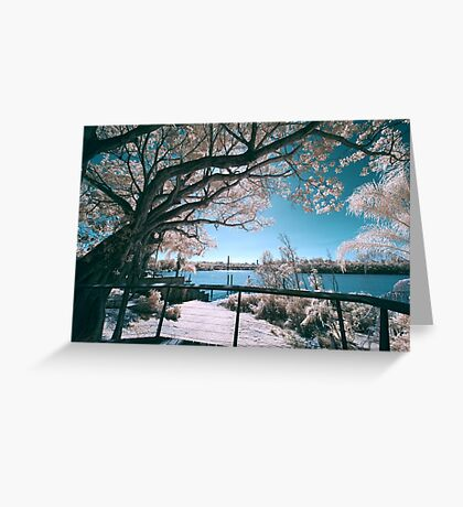 The Fig Tree in Pink And Green Greeting Card