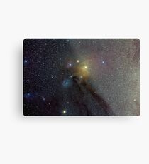The Star Clouds of Rho Ophiuchi Metal Print