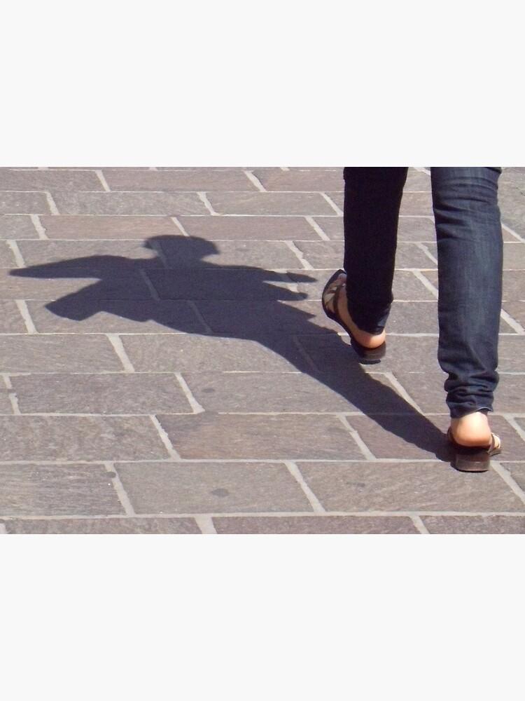Winged shadow, Bolzano/Bozen, Italy by leemcintyre