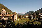 Castle Mareccio Vineyard, Bolzano/Bozen, Italy by L Lee McIntyre