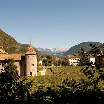 Castle Mareccio Vineyard, Bolzano/Bozen, Italy by leemcintyre