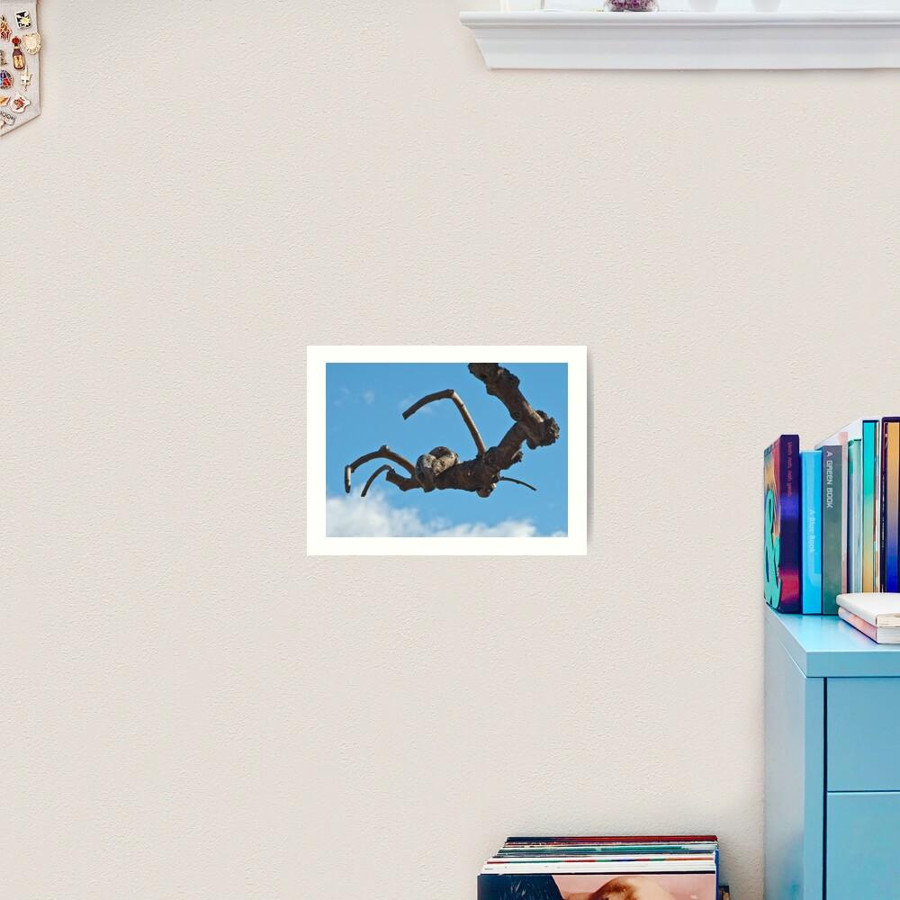 """""""Spider"""", Bolzano/Bozen, Italy Art Print"""