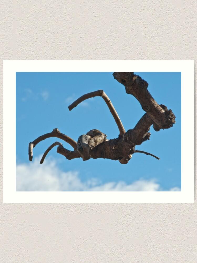 "Alternate view of ""Spider"", Bolzano/Bozen, Italy Art Print"