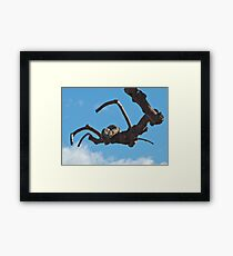 """Spider"", Bolzano/Bozen, Italy Framed Print"