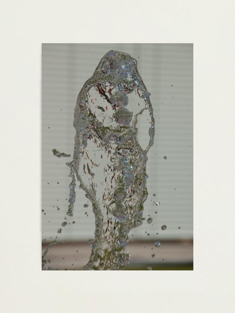 Alternate view of Water Snake, Bolzano/Bozen, Italy Photographic Print