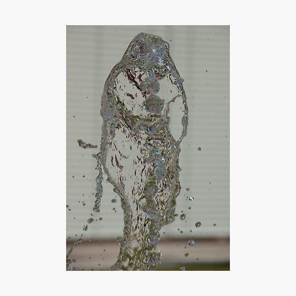 Water Snake, Bolzano/Bozen, Italy Photographic Print