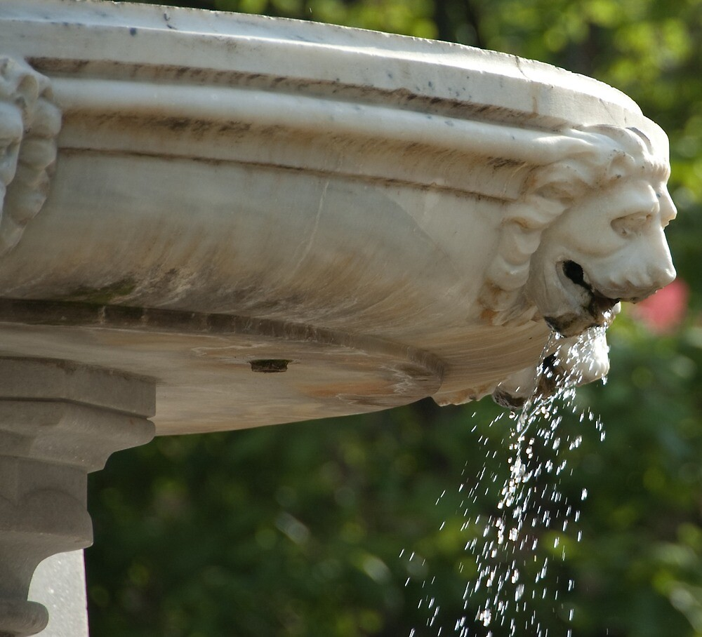 LIon Head Fountain, Piazza Walther, Bolzano/Bozen, Italy by L Lee McIntyre