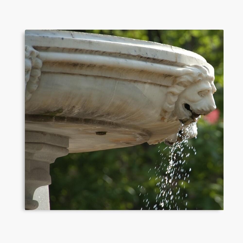 LIon Head Fountain, Piazza Walther, Bolzano/Bozen, Italy Canvas Print