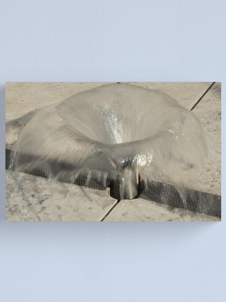 Alternate view of Sprinkler Fountain, EURAC plaza, Bolzano/Bozen, Italy Canvas Print