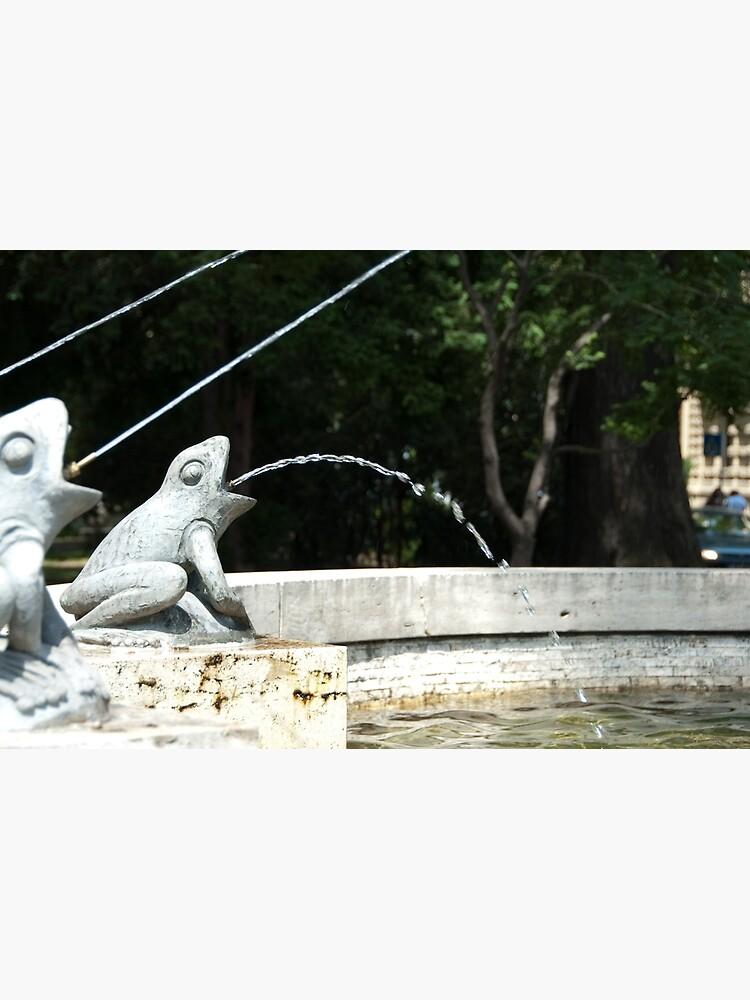 Frog Fountain, Bolzano/Bozen, Italy by leemcintyre