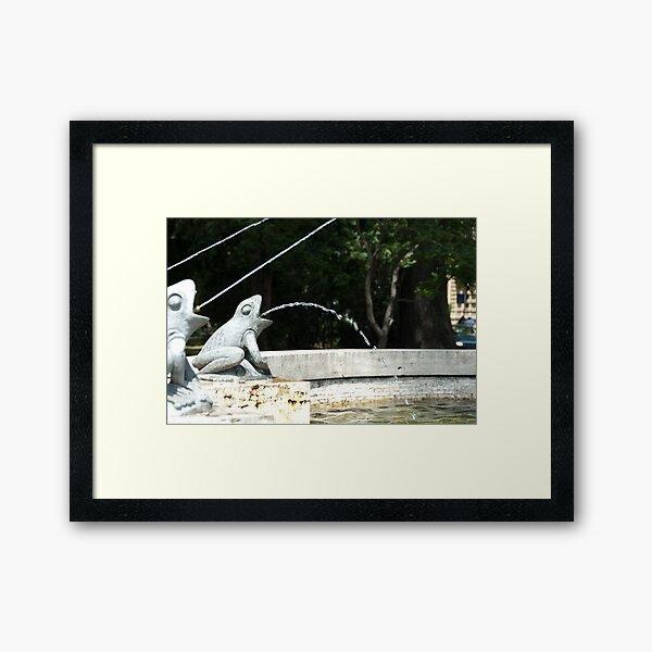Frog Fountain, Bolzano/Bozen, Italy Framed Art Print