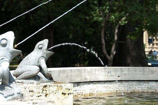 Frog Fountain, Bolzano/Bozen, Italy by L Lee McIntyre