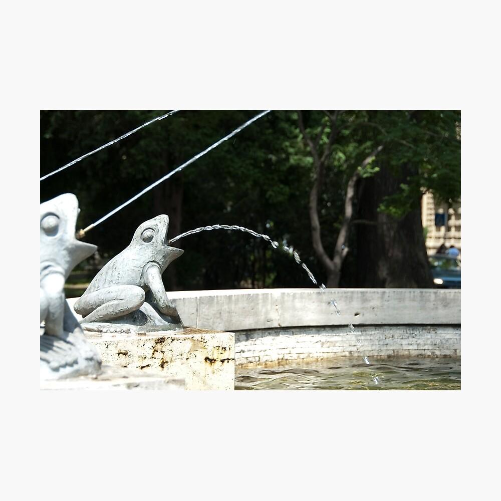 Frog Fountain, Bolzano/Bozen, Italy Photographic Print