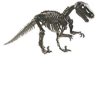 T-rex by norawr
