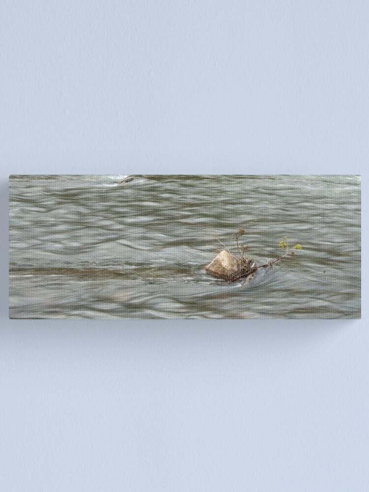 Alternate view of Heading Upstream, Talvera River, Bolzano/Bozen, Italy Canvas Print