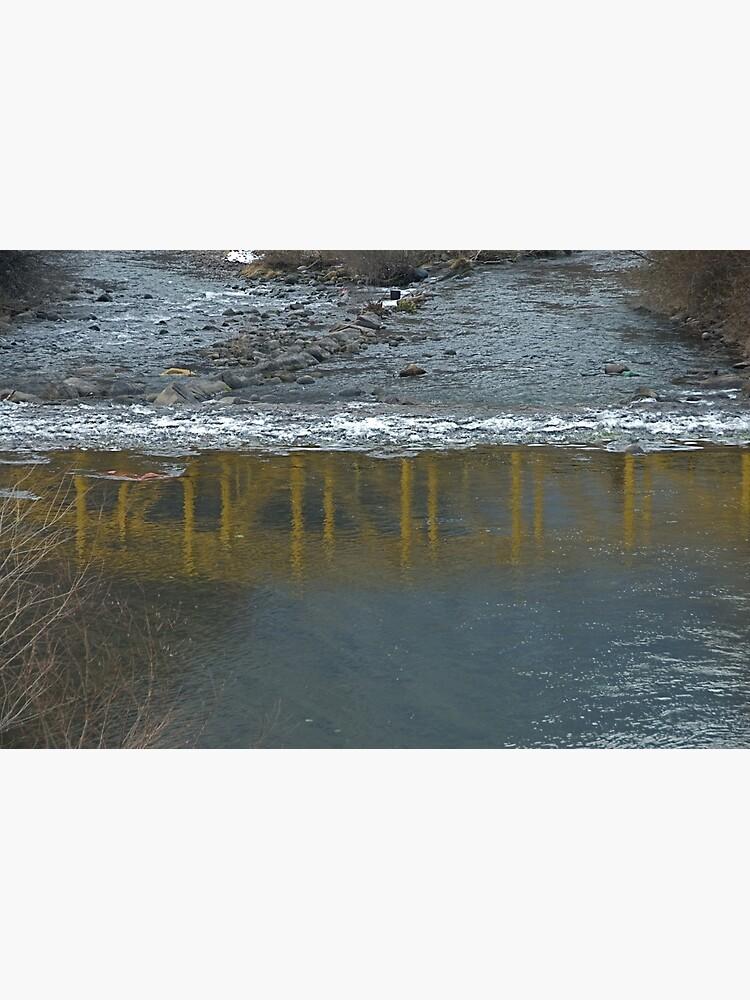 Bridge on the Talvera River, Bolzano/Bozen, Italy by leemcintyre