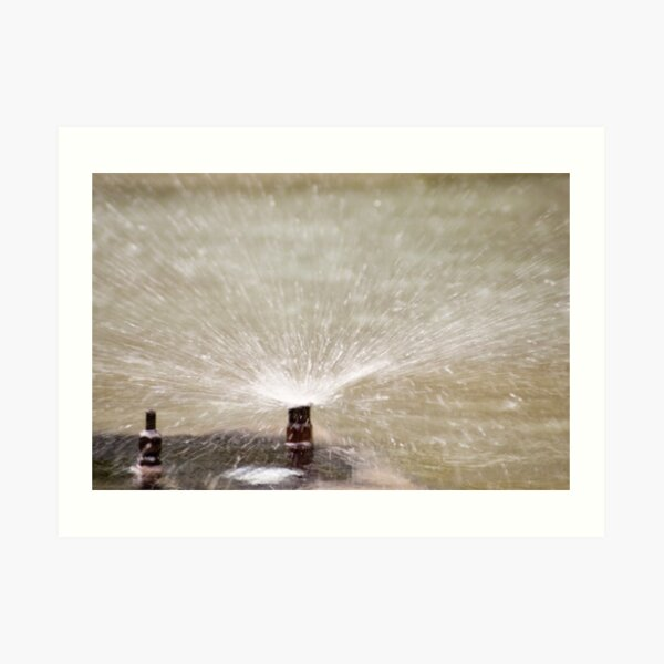 Sprinkler Spray, Vancouver, British Columbia Art Print