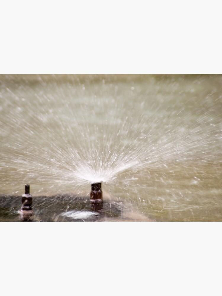 Sprinkler Spray, Vancouver, British Columbia by leemcintyre