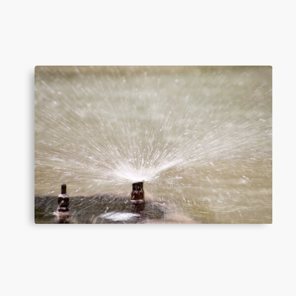 Sprinkler Spray, Vancouver, British Columbia Metal Print
